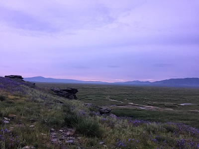 Nomadic Wilderness of Mongolia