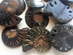 Polished Black Ammonite Fossils #082216